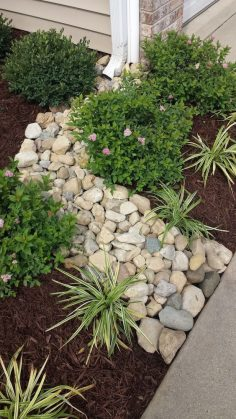 6 affordable landscaping tricks to decorate outside your home