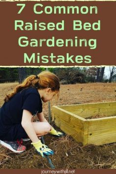 7 common mistakes in raised bed gardening