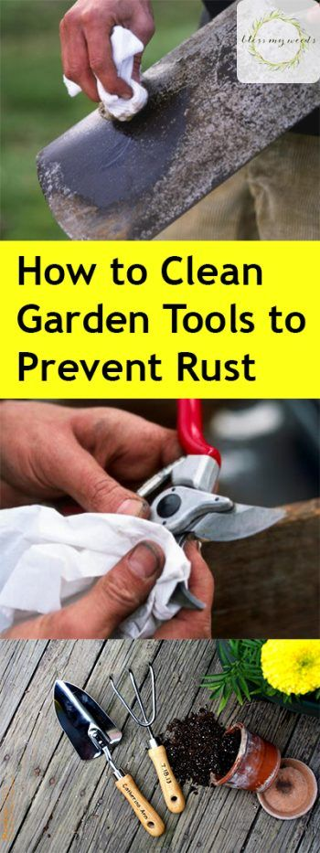 How to clean garden tools to avoid rust and dull blades