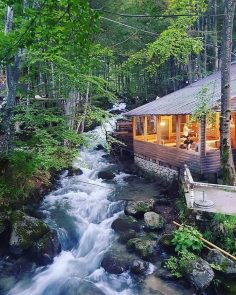 """Just Cabin Life on Instagram: """"Nature be like …"""""""