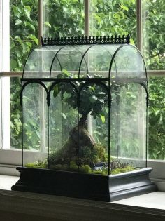 Large glass terrarium, showcase H Potter Wardian, showcase, fairy garden, succulent container, Garde