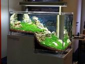 45 captivating aquarium aquarium design ideas – HOUZWEE