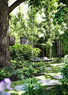 A garden of contrasts that works harmoniously
