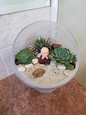 How to make your own succulent themed terrarium