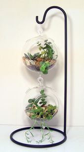 Large hanging glass or flathers terrarium stand …