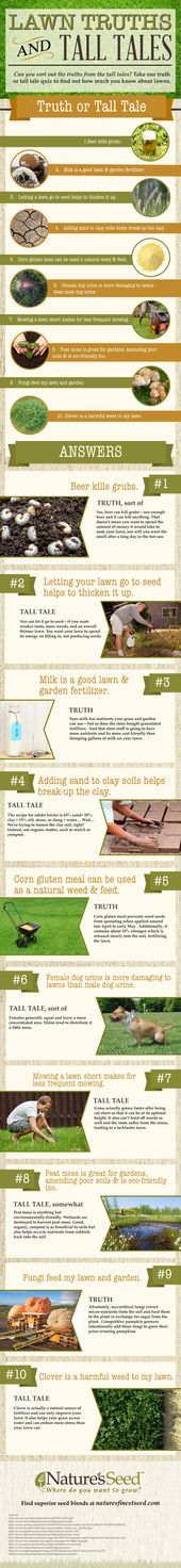 Truths of lawn care and tall tales, do you know the …