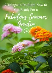 7 things to do now to prepare for a fabulous summer garden – Survival Mom