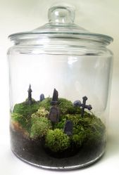 More than 60 wonderful DIY terrarium design ideas to inspire you