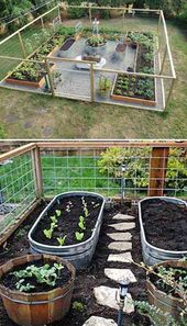 23 tips for growing vegetables for a successful first garden.