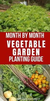 Garden planting guide month by month – Little Sprouts Learning
