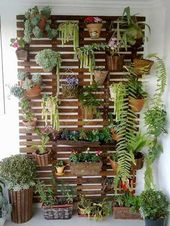 Green wall and other vertical outdoor and indoor gardens.
