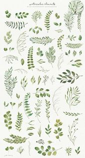 Julia Dreams green leaves collection at the creative market