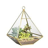 NCYP Copper Pyramid Vertical Metal Geometric Glass Terrarium for hanging on the wall Brass board Succ …