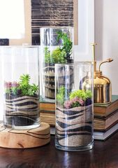 Terrarium: models and ideas to create a mini garden – New decoration styles
