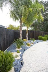 Trendy backyard ideas Tropical palm ideas
