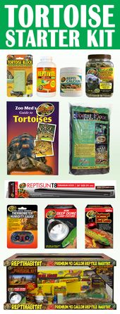Turtle starter kit. Everything you need to …