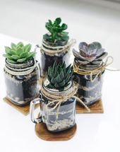 You are going to fall in love with Mason Jar Gardens